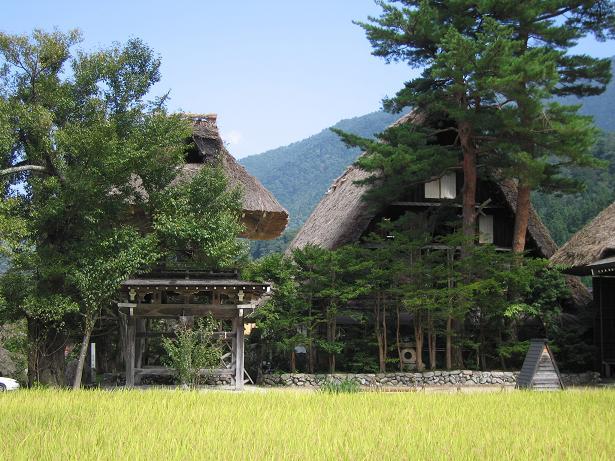 白川5.JPG